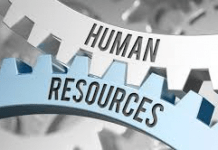 NEC Announce New Role of Director of Human Resources