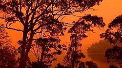 Adventist Church in Australia responds to bushfire tragedy